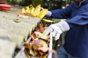 Gutter cleaning Freehold, Removing leaves from gutter, Homeowner performing gutter cleaning in Freehold